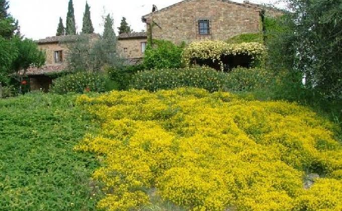 Apartment for rent in Chianti, Tuscany